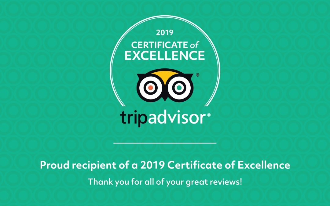 Bean on the Green earns 2019 TripAdvisor Certificate of Excellence